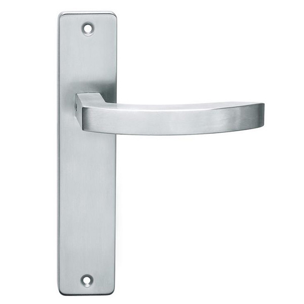 Stainless Steel Door Handles On Backplates